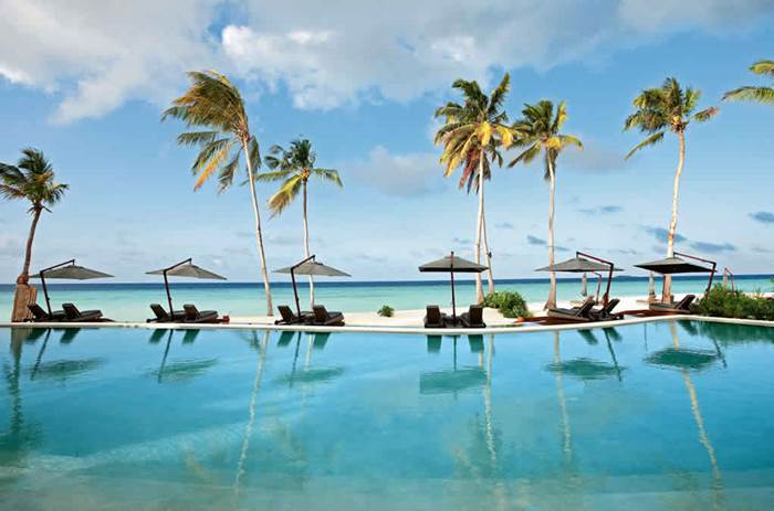 Palm trees by the pool at Constance Halaveli resort in the Maldives