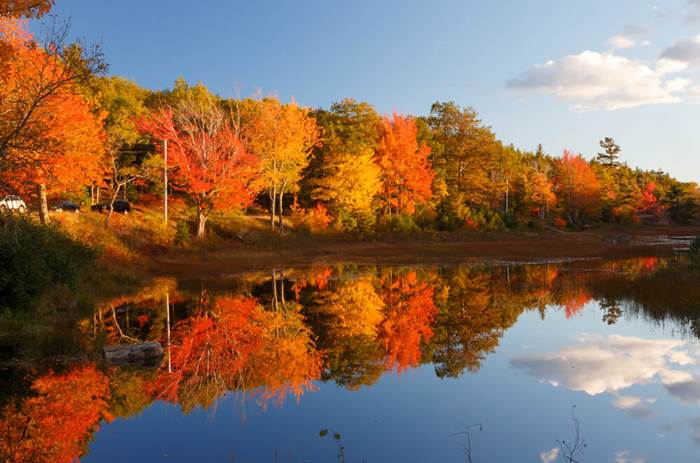 Tauck Grand New England - Fall colors in Acadia National Park with brilliant colorful trees reflected in water