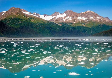 Explore! Alaska Adventure - Sea covered with floating ice seen from the cruise in Kenai Fjords National Park in summer, Alaska, USA